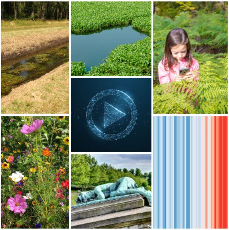 Citizen Science: zeven nieuwe projecten goedgekeurd