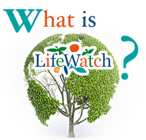 Wat is LifeWatch
